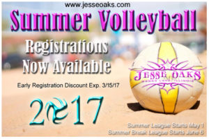 Summer Volleyball copy (1)