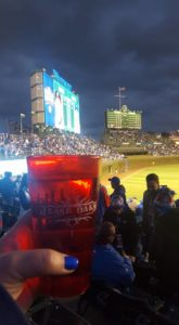 The Jesse Oak Cup at Game 5 of the World Series in Wrigley Field. Photo Submission by Karen